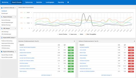 Search Console von Google in der PageRangers Auswertung